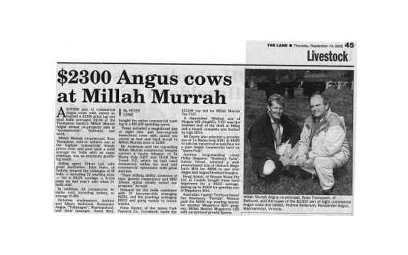 Bull Sale 2000