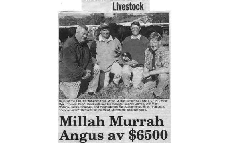 Bull Sale 2001