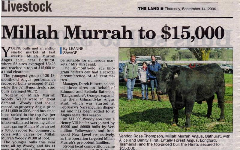 Bull Sale 2006