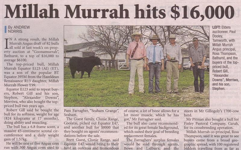 Bull Sale 2010