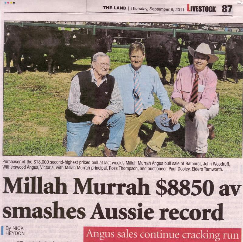 Bull Sale 2011