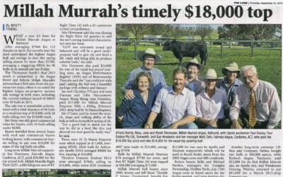 2013 Bull Sale Report