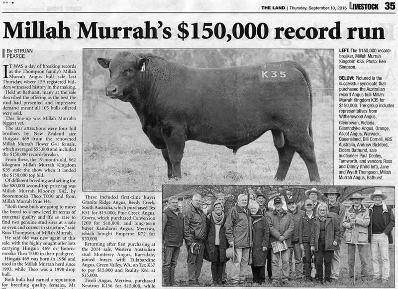 Bull Sale 2015