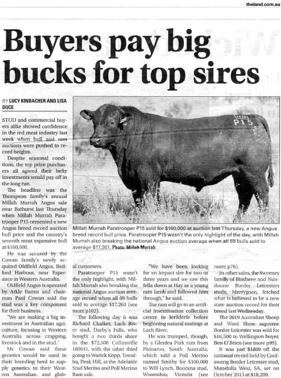 Bull Sale 2019