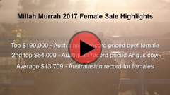 2017 Cow Sale Highlights