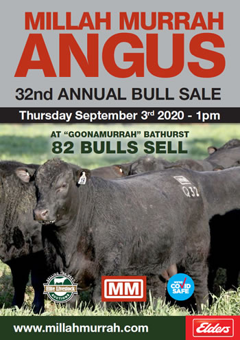 2020 Bull Sale Catalogue